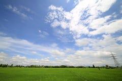 Landschaft eines ruhigen Reisfeldes auf Wolken und Himmelhintergrund Lizenzfreie Stockfotografie