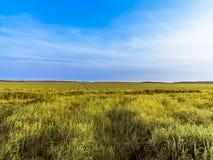 Landschaft, Feld, Himmel, Horizont Stockfoto