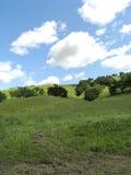 Landschaft an Firestone-Weinberg 1 Stockfotografie