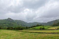Landschaft in Flores stockbild