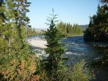 Landschaft, Fluss Lizenzfreies Stockbild