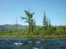 Landschaft, Fluss Lizenzfreie Stockfotos