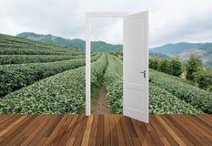 Landschaft hinter der Öffnungstür, 3D Lizenzfreie Stockbilder