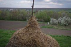 Landschaft im Bauernhof lizenzfreie stockbilder