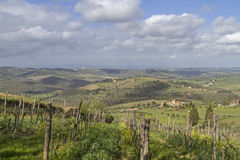 Landschaft im Chianti Stock Photography