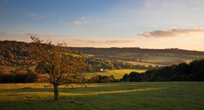 Landschaft im Chilterns am Sonnenuntergang Lizenzfreies Stockbild