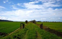 Landschaft im Frühjahr Lizenzfreie Stockfotografie