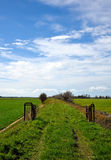 Landschaft im Frühjahr Lizenzfreies Stockbild