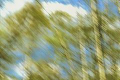 Landschaft im hellen Unschärfehintergrund Lizenzfreie Stockbilder