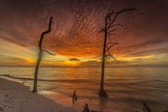Landschaft im mentawai Stockbilder