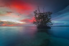 Landschaft im mentawai Stockfotos