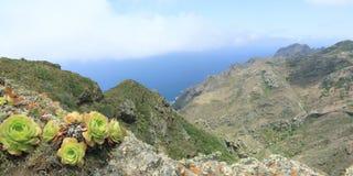 Landschaft im Nationalpark Anaga Lizenzfreie Stockfotografie