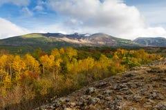 Landschaft im Nationalpark Daisetsuzan stockfotos