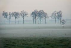 Landschaft im Nebel lizenzfreies stockbild