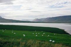 Landschaft im Norden von Island Stockfotografie