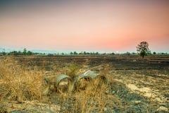 Landschaft im Norden von Thailand Stockfoto