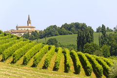 Landschaft im Oltrepo Pavese (Italien) Lizenzfreie Stockfotografie