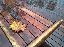 Landschaft im Regen Stockbild