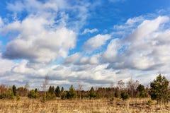Landschaft im Vorfrühling Lizenzfreies Stockfoto
