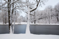 Landschaft im Winter Stockfotografie