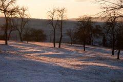 Landschaft im Winter gegen das Licht Stockfotos