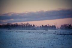 Landschaft im Winter, Schnee auf den Feldern, Bäume auf horizont, roter Himmel im Sonnenaufgang Stockfotografie