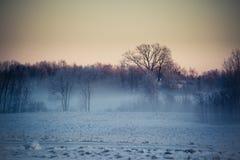 Landschaft im Winter, Schnee auf den Feldern, Häuser und Bäume auf horizont, roter Himmel im Sonnenaufgang Lizenzfreies Stockbild