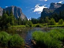 Landschaft im Yosemite-Park Stockbilder