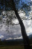 Landschaft in Karpaten im auturmn Lizenzfreie Stockfotografie