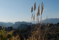 Landschaft Kong Lor lizenzfreie stockbilder