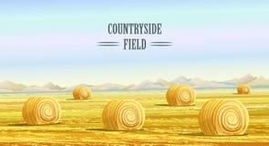 landschaft Ländliches Gebiet Felder mit Heuschobern Stockbilder