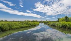 Landschaft London-Sumpfgebietdes mittelnaturreservats Stockbilder