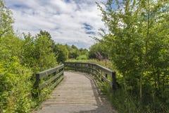 Landschaft London-Sumpfgebietdes mittelnaturreservats Stockfotografie