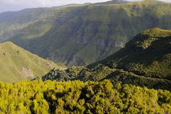 Landschaft Madeira Stockfotografie