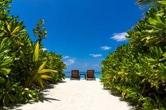 Landschaft in Malediven lizenzfreie stockbilder