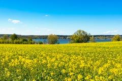 Landschaft in Mecklenburg, Nord-Deutschland im Frühjahr Lizenzfreie Stockfotografie