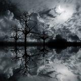 Landschaft mit 3 d-Grafiken Nacht Lizenzfreie Stockbilder