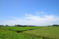 Landschaft mit Ackerland Stockfoto