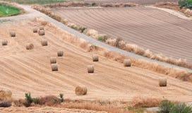 Landschaft mit Ackerland und goldenen Heuballen Stockfotografie