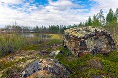 Landschaft mit Bergen Lizenzfreie Stockbilder