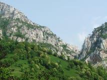 Landschaft mit Bergen, Felsen und Bäumen Stockfotografie