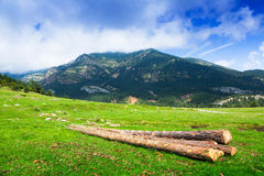 Landschaft mit Bergwiese Stockbilder