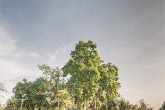 Landschaft mit blauem Himmel Lizenzfreies Stockfoto