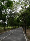Landschaft mit dem Herbstwald Lizenzfreie Stockfotografie