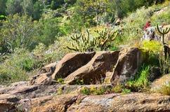 Landschaft mit einem Felsen Stockfotografie