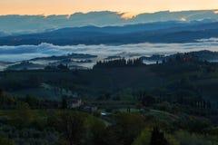 Landschaft mit einem Morgennebel und -weinbergen Stockfoto