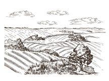 Landschaft mit einem Weizenfeld und Dorfhäusern Regenbogen und Wolke auf dem blauen Himmel vektor abbildung