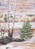 Landschaft mit einer Birke und Pelzbäumen Stockfotos