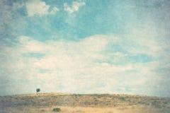Landschaft mit einsamem Baum Lizenzfreies Stockfoto