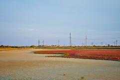 Landschaft mit Eisenbahn Lizenzfreie Stockbilder